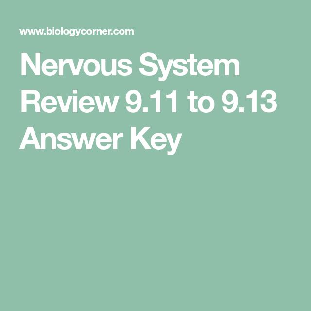 Nervous System Review 9.11 to 9.13 Answer Key | Med- Nervous System ...