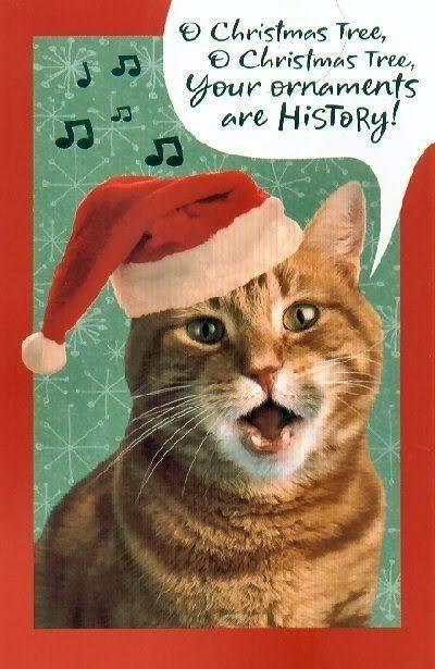 i wonder why im singing this song - Animals Singing Christmas Songs