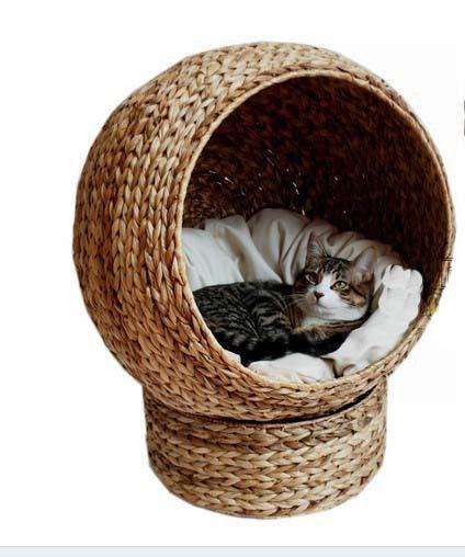 chi cave tumblr af pinterest kratzbaum spielen und. Black Bedroom Furniture Sets. Home Design Ideas