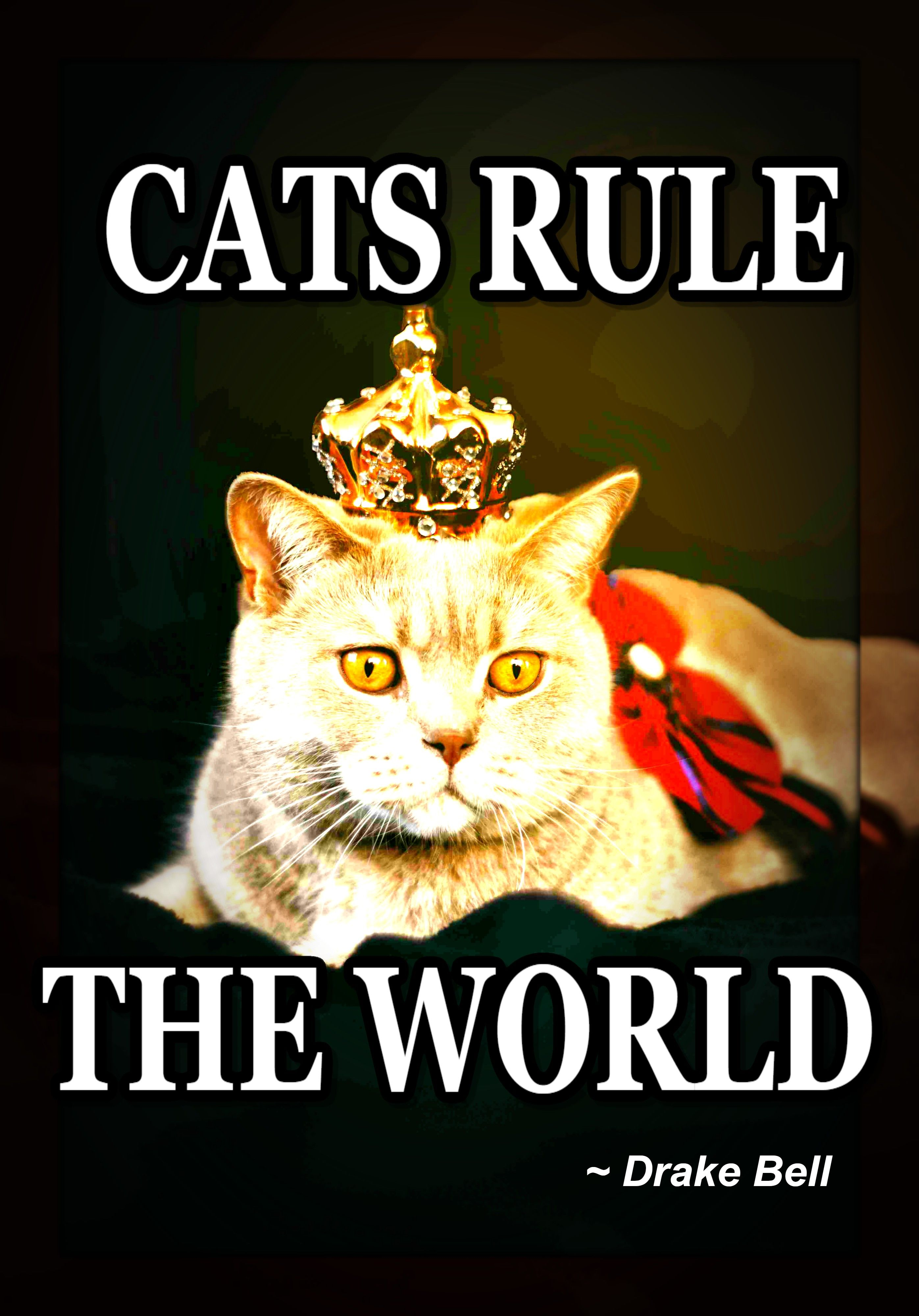 Cats Rule The World Cats Love Pets Animal Quotes Cat Quotes