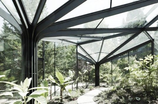 idA's Greenhouse Botanical Garden Grueningen is a Parametrically Designed Artificial Forest in Switzerland #botanicgarden