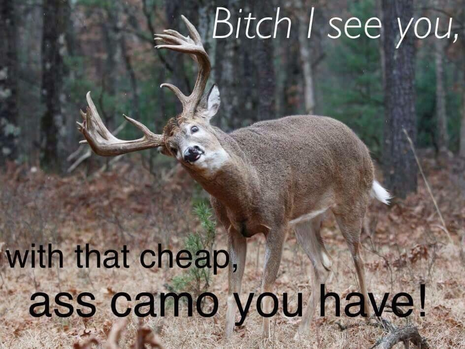 ed8fd828e249f6b7f6ff19b0b630b2b8 don't wear cheap ass camo! lol hunting & fishing quotes,Funny Deer Memes