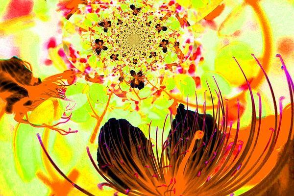 Capernflower Fotopainting