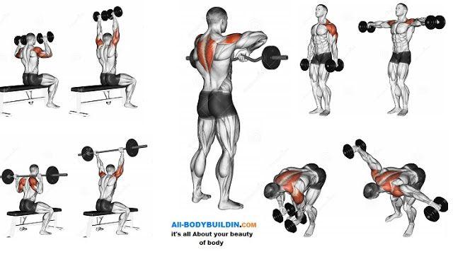 Best Shoulder Workout | bodybuilding | Pinterest | Workout
