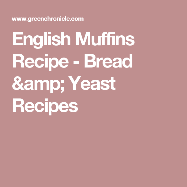 English muffins recipe bread yeast recipes recipesbreads english muffins recipe bread yeast recipes forumfinder Gallery