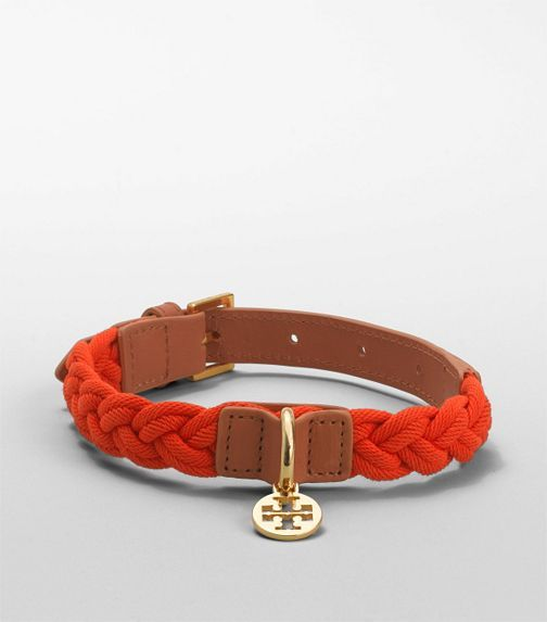 tory burch dog collars!