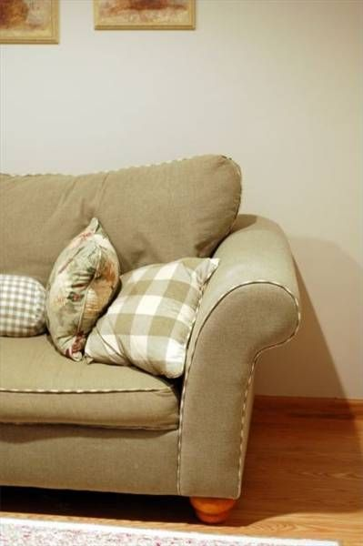 How to Clean Milk From Upholstery   Hunker   Clean couch ...