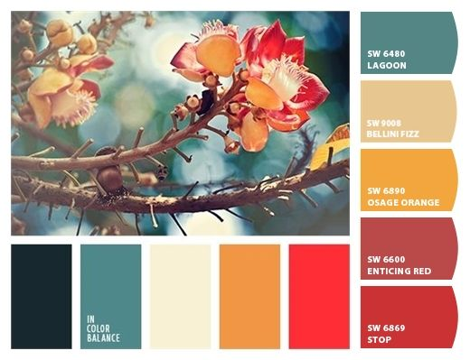 paint colors from colorsnap by sherwin williams black on most popular interior paint colors for 2021 id=99570