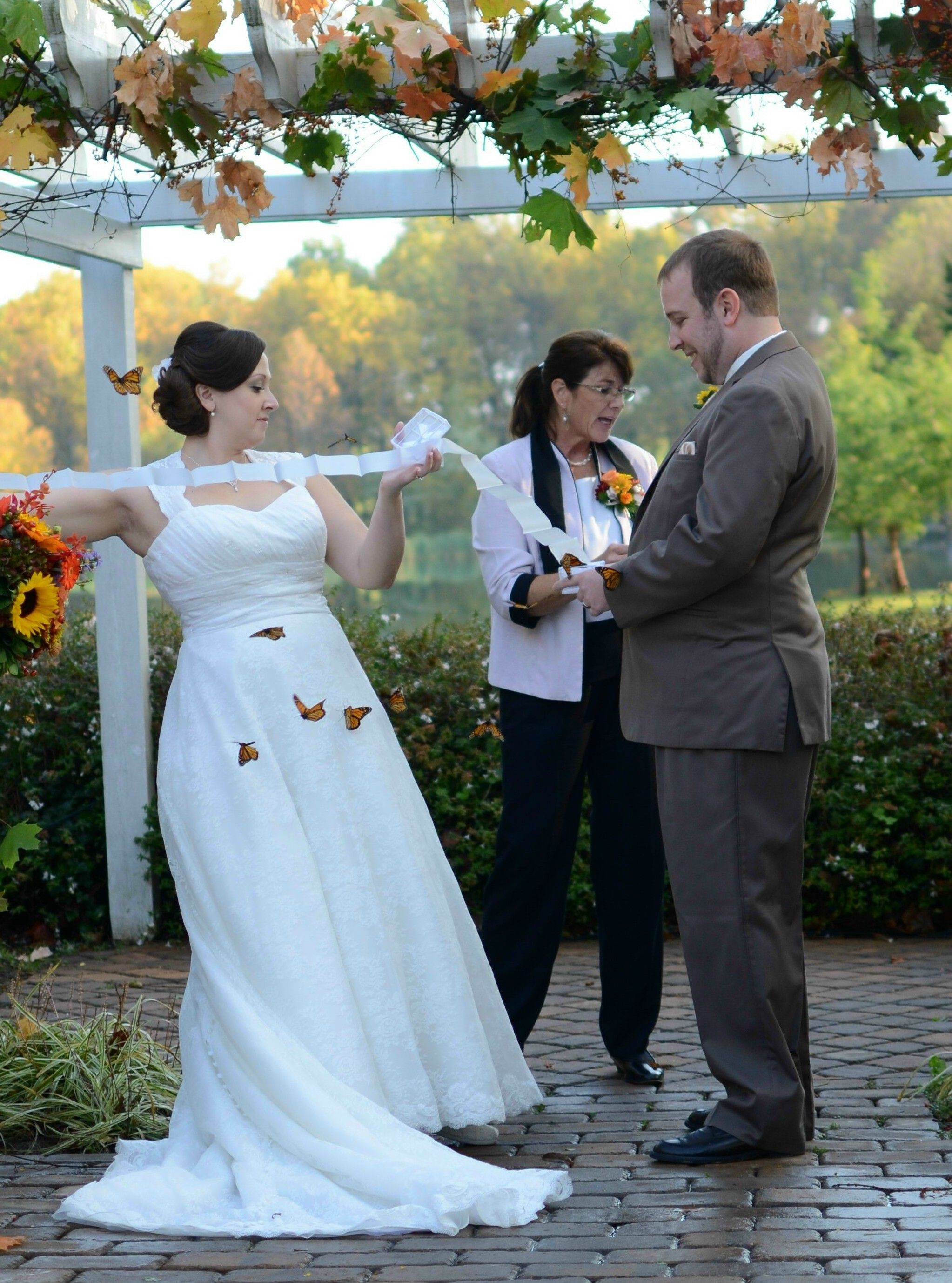 Release Live Erflies For Your Special Wedding Erflyreleasesbys
