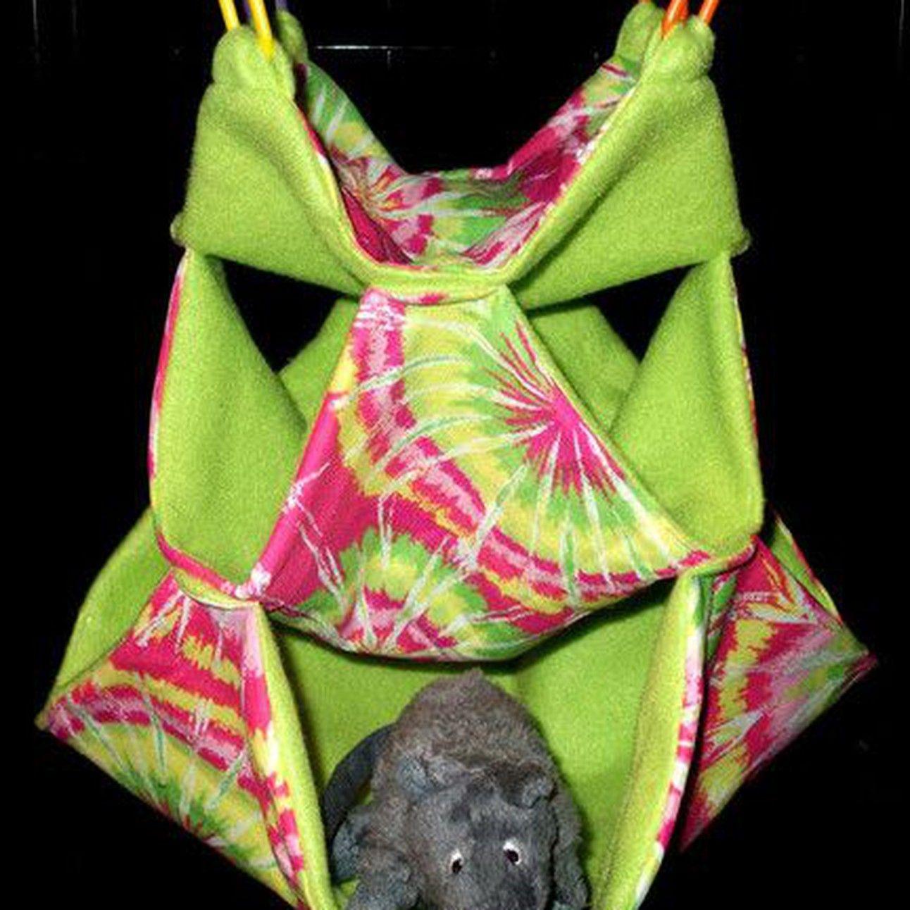 Honey comb hammock sugar glider sugar glider baby