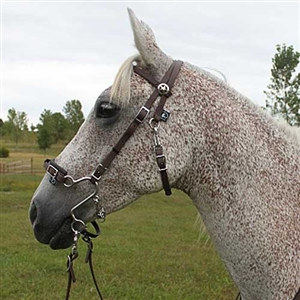 WESTERN ENGLISH SADDLE ROPE NOSE HORSE BIT LITTLE S HACKAMORE GOES ON THE BRIDLE