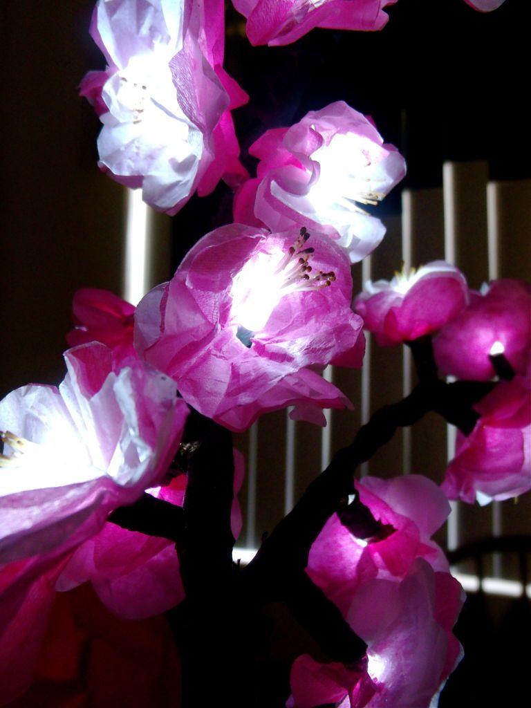How to Make Cherry Blossom Lights How