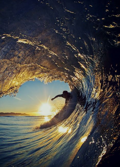 Sealovers Surfingfree With Images Surfing Surfing Waves