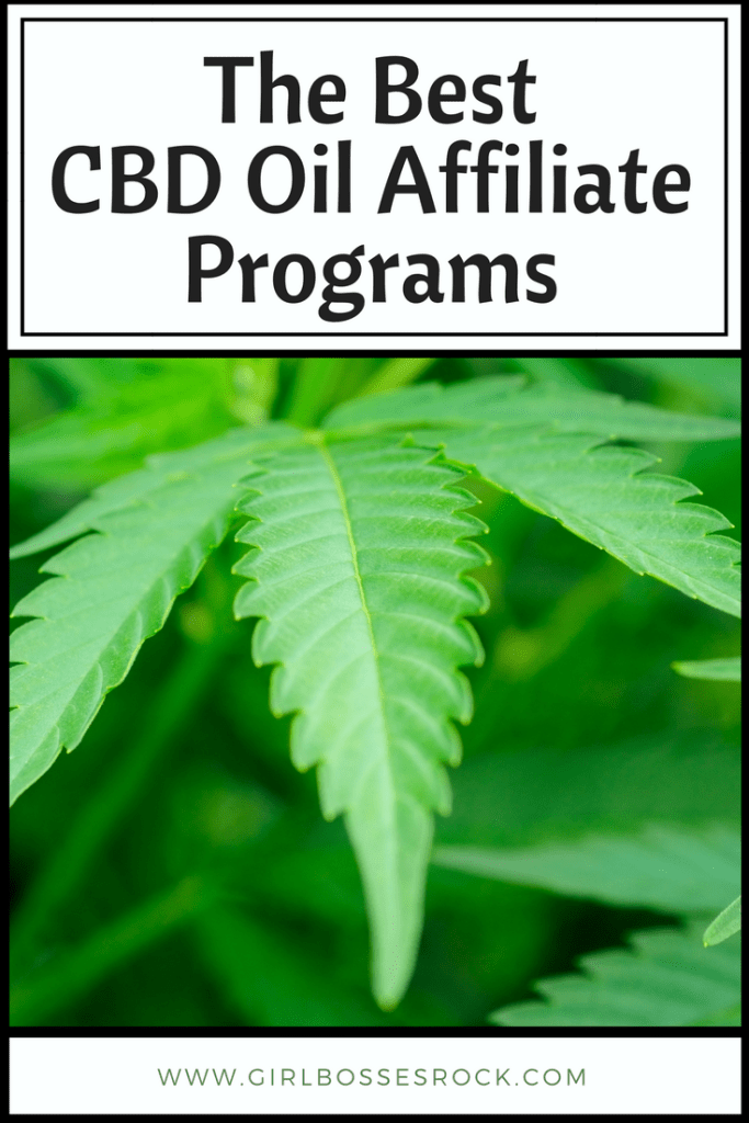 The Best CBD Oil Affiliate Programs to promote on Pinterest