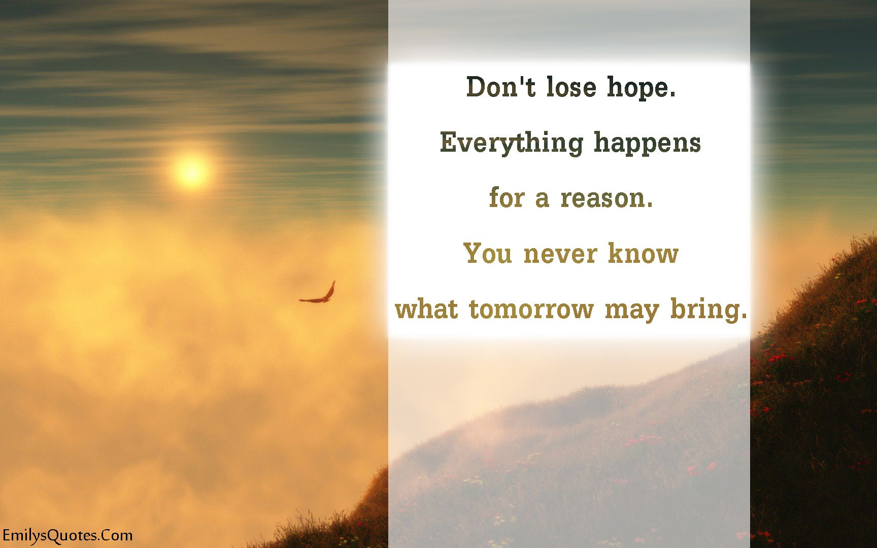 Don T Lose Hope Everything Happens For A Reason You Never Know What Tomorrow May Bring What About Tomorrow Dont Lose Hope Hope Quotes