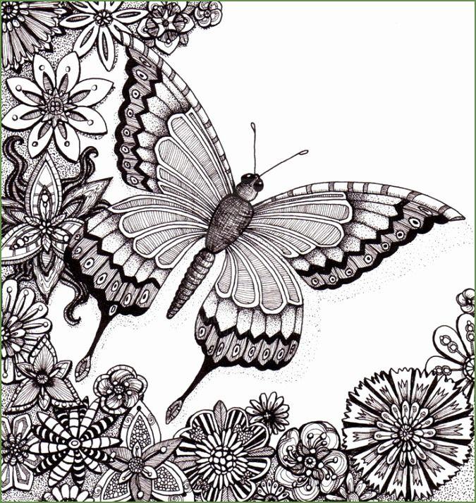 kleurplaten voor volwassenen vlinders zoeken