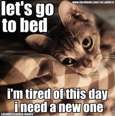 ed9428b21ee428af78cbed6f42fdb3c8 ever feel like this? chronic illness comic relief pinterest,Pintrest Chronic Illness Memes