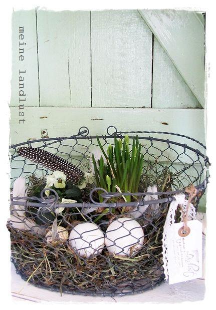 Meine Landlust | Frühlingsdeko | Pinterest | Drahtkorb, Frühling Und  Landlust