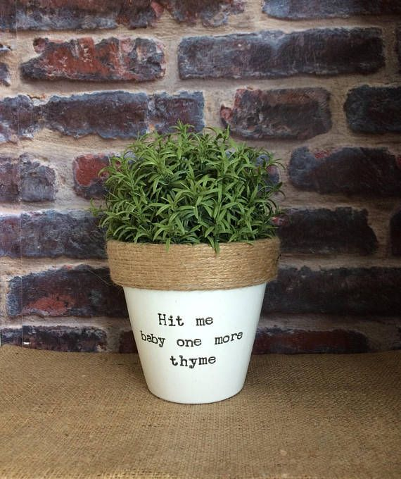 Nursery Indoor Plants Near Me: Plant Pot Gift 'Hit Me Baby One More Thyme' Indoor Novelty