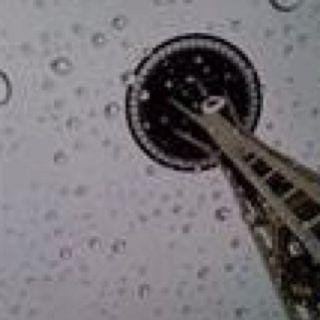 Needle through the rain