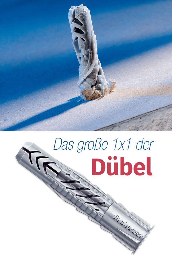 Dübel | selbst.de