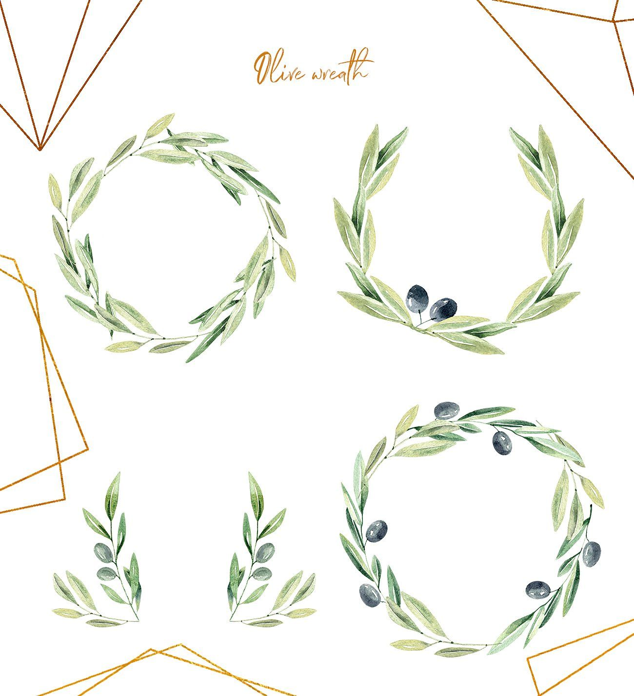 Watercolor Olive Branches Olive Branch Olive Wreath Wreath Watercolor