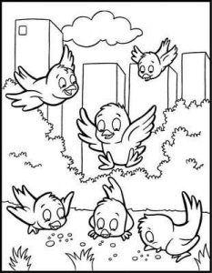 Farklı Okul öncesi Boyama Sayfaları Oryantasyon Bird Coloring