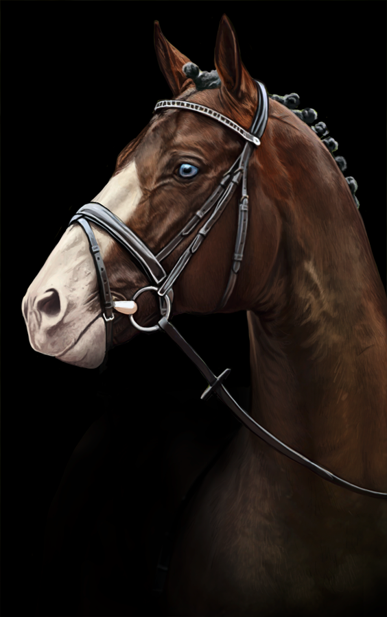 Horse painting by feverpaint on deviantART - Digital Art