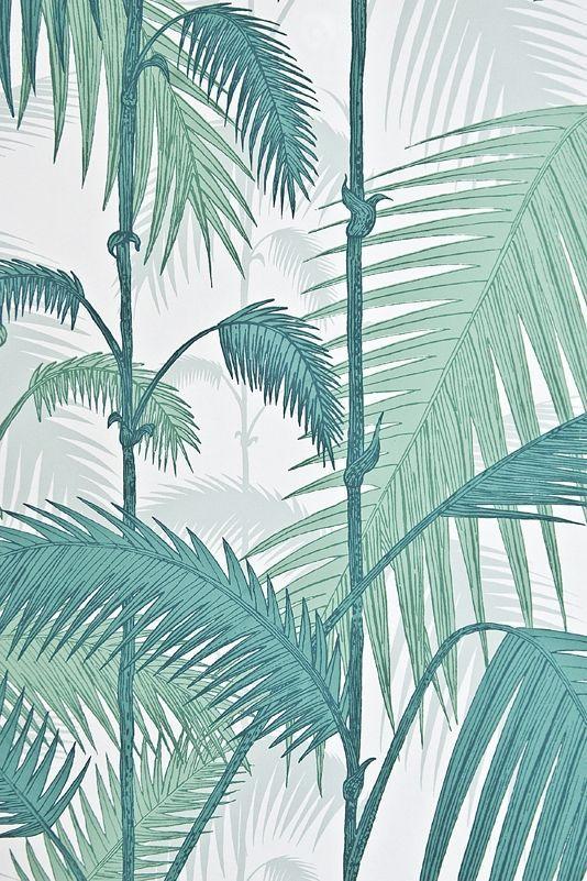 Palm Jungle Wallpaper Fresh Illustrated Tree In Aqua On White