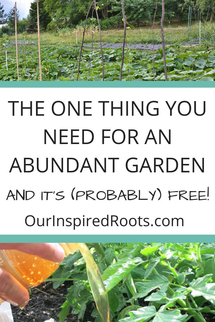 How To Make Organic Fertilizer Manure Tea For A Thriving Garden