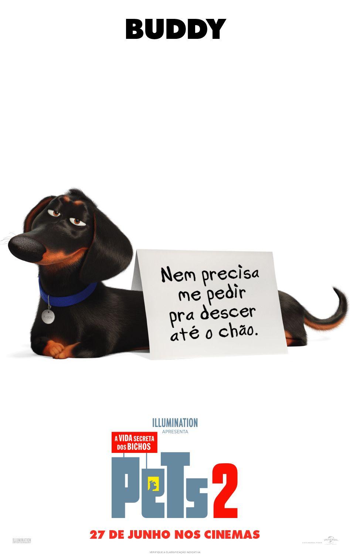 Pin De Tessa Em Movies Com Imagens Filme Pets Vida Secreta