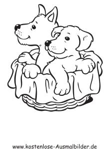 Ausmalbild Hunde im Korb zum kostenlosen Ausdrucken und ...