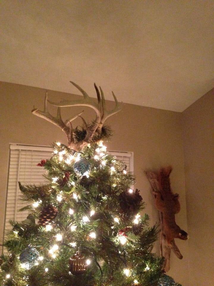 Deer antlers as my Christmas tree topper. | Deer antler ...