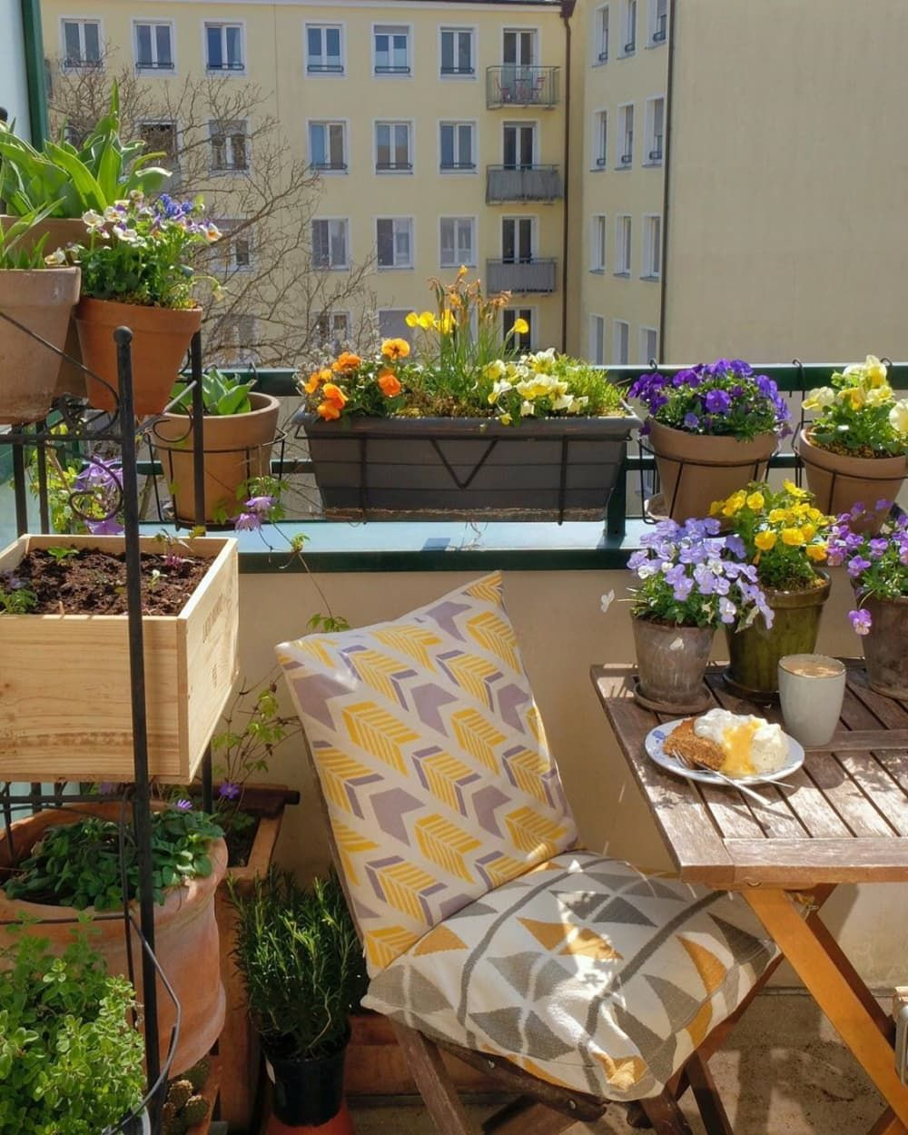 How To Grow Plants In A Small Apartment