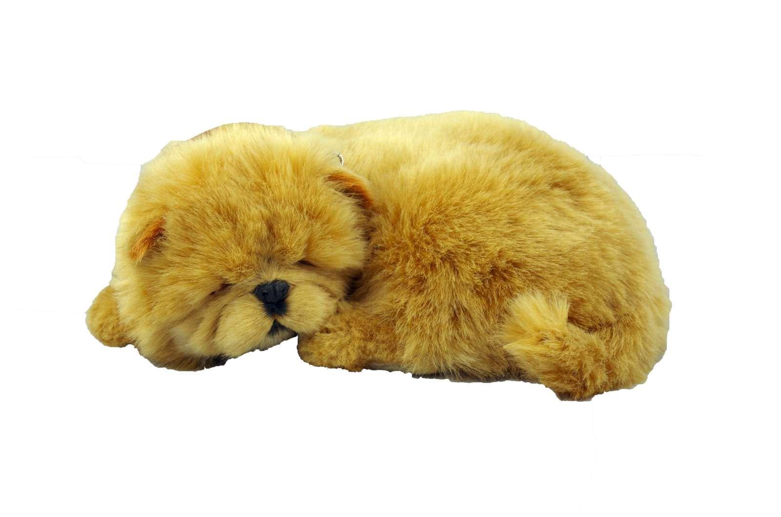Pin By Liliana Rios On Perfect Petzzz Teddy Animals Teddy Bear