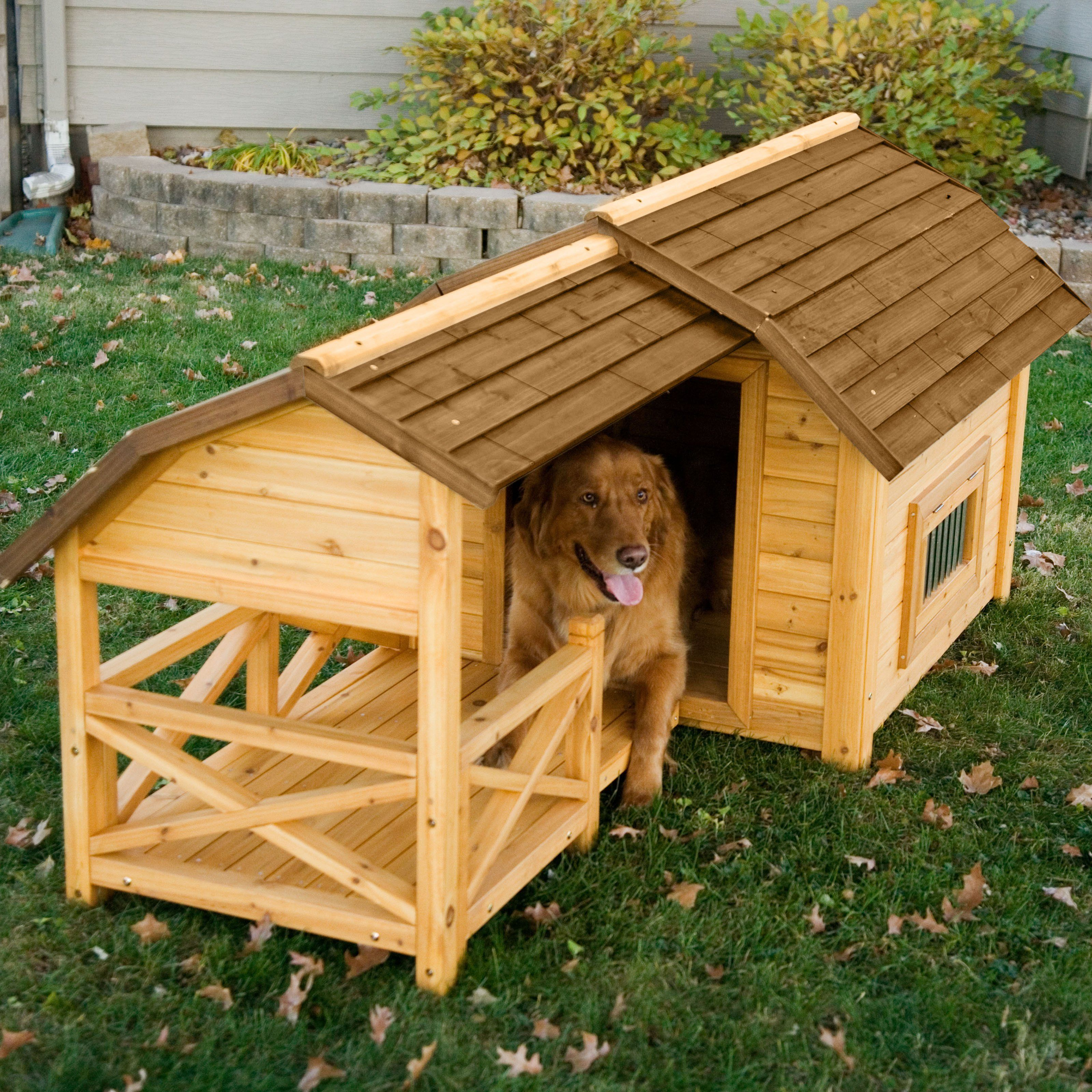 Boomer George Wooden Barn Dog House With Images Large Dog House Wood Dog House Dog House Plans