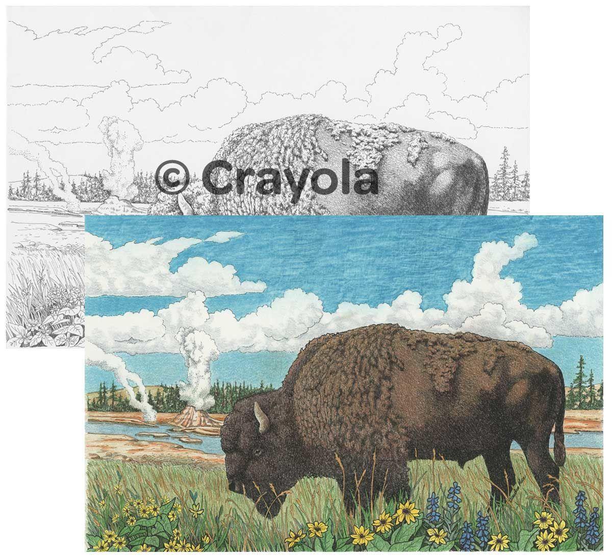 Crayola Color Escapes - Adult Coloring Kits   Crayola   quirky ...
