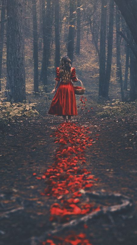 Little Red Riding Hood Tumblr