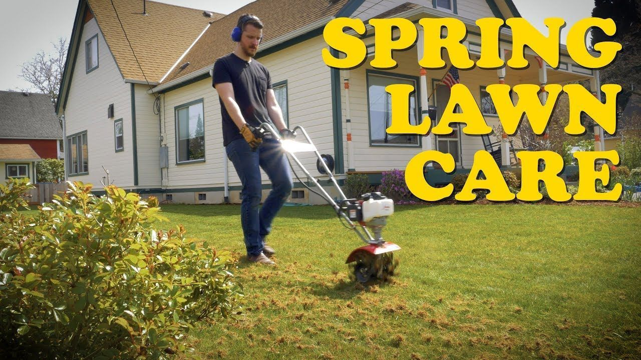 how to dethatch a lawn youtube