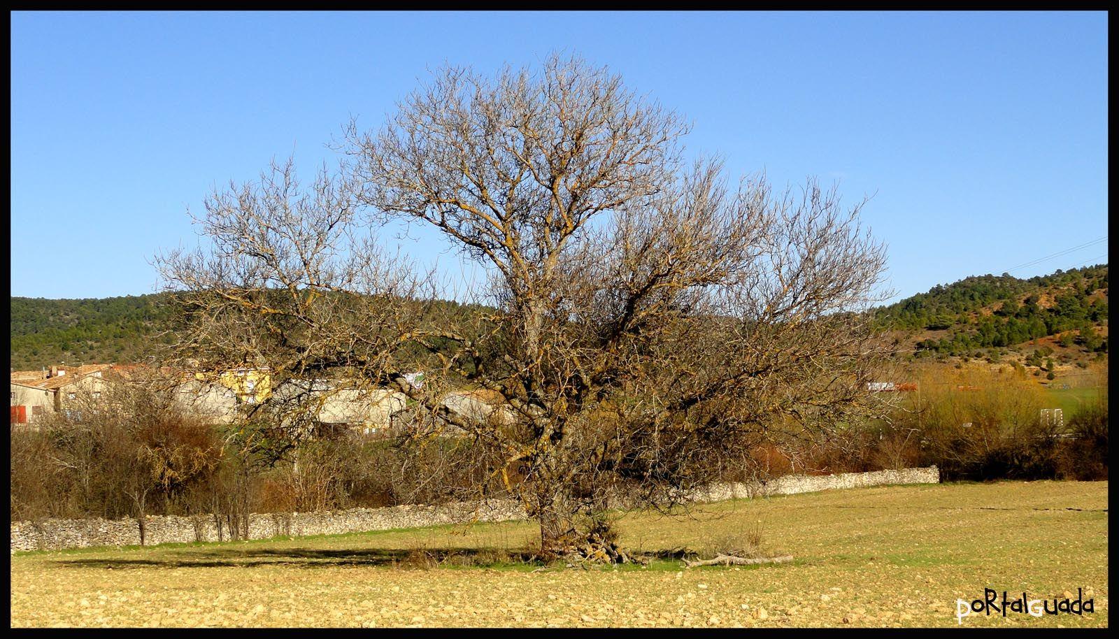 Rincones de Arbeteta, Guadalajara - España  www.portalguada.com  PortalGuada