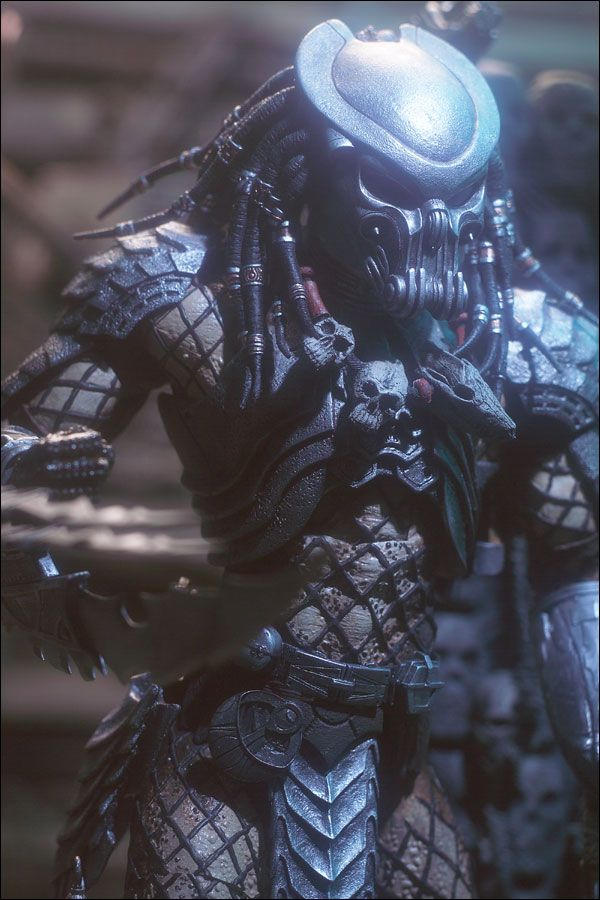 Alien vs predator august 04 celtic predator spawn mcfarlane predator august 04 celtic predator voltagebd Image collections