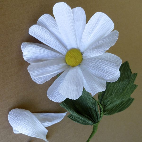 Patterns for crepe paper flowers crepe paper flowers daisy daisy patterns for crepe paper flowers mightylinksfo