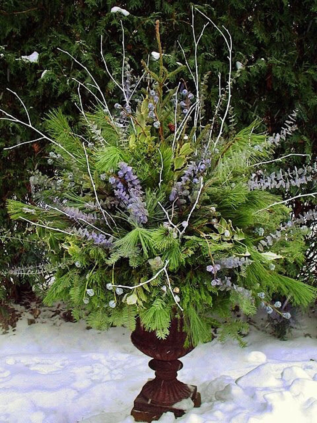 winter container garden ideas winter containers pinterest
