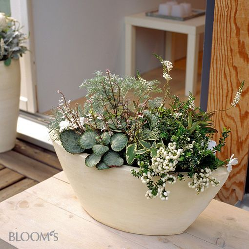 schiff mit bepflanzung haus und garten pinterest. Black Bedroom Furniture Sets. Home Design Ideas