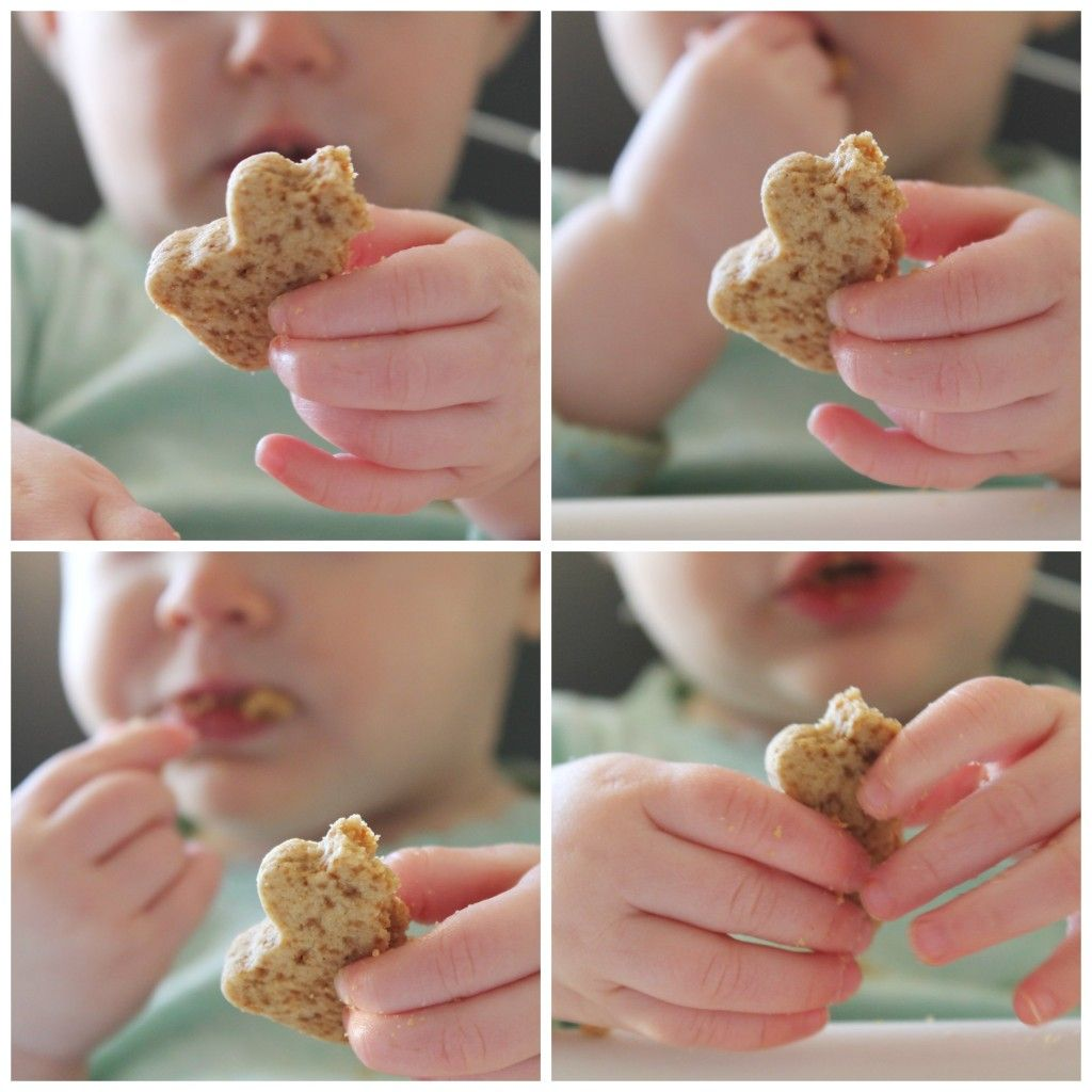 Teddy Cookie Healthy Snack For Babies And Toddlers Bake