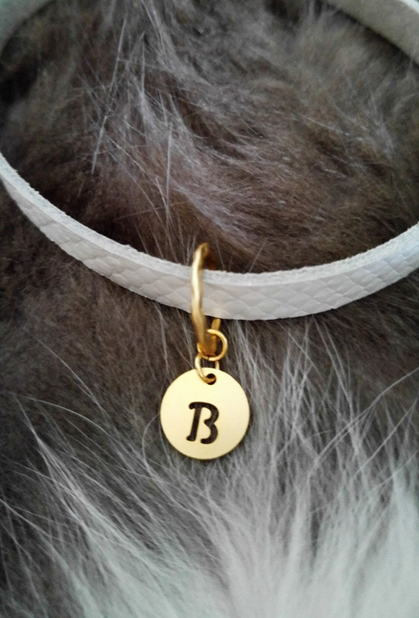 personalized Cat collar leather cat collar cat id tag pet