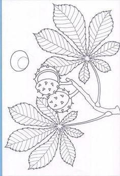 Hasznalja A Nyilakat Kapcsolo A Lejatszott Kep Fall Arts And Crafts Botanical Sketchbook Fabric Painting