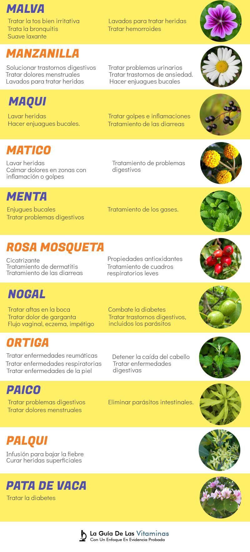 hierbas medicinales para la diabetes información tagalog