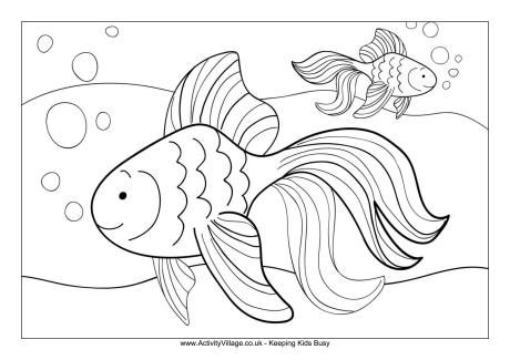 Goldfish Colouring Page