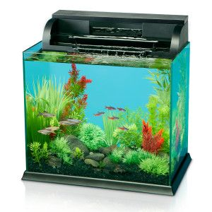 National Geographic Waterfall Aquarium Aquariums Petsmart Aquarium Diy Fish Tank Petsmart